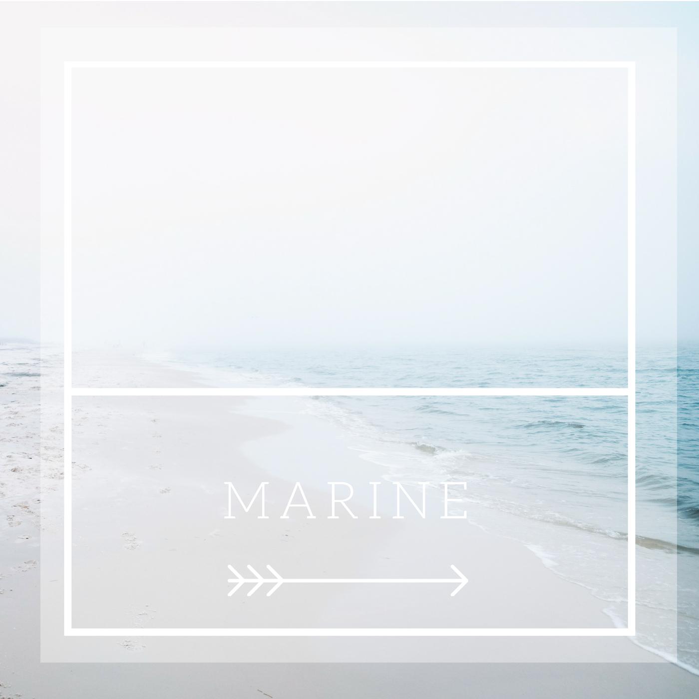 partecipazioni marine